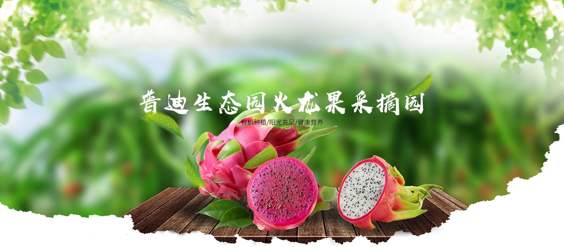 重庆草莓基地